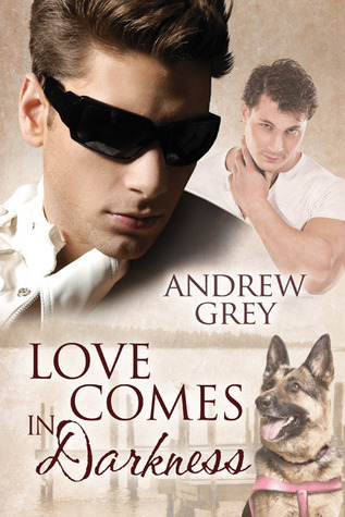 Review: Love Comes in Darkness by Andrew Grey