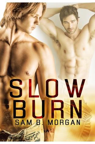 Review: Slow Burn by Sam B. Morgan