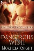 Review: Dangerous Wish by Morticia Knight