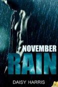 Review: November Rain by Daisy Harris