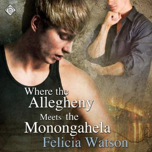 Throwback Thursday Audiobook Review: Where the Allegheny Meets the Monongahela by Felicia Watson