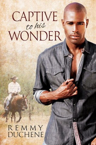 Review: Captive to His Wonder by Remmy Duchene