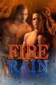 Review: Fire & Rain by Carter Quinn