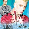 Audiobook Review: Loving Jay by Renae Kaye