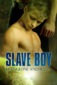 Throwback Thursday Review: Slave Boy by Evangeline Anderson