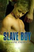 Slave Boy by Evangeline Anderson