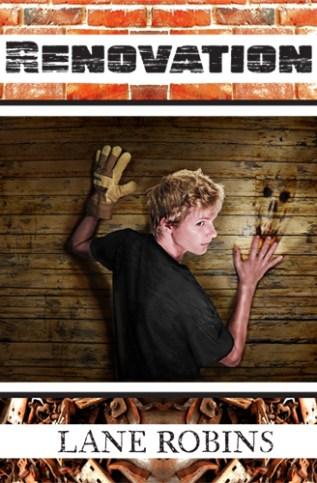 Review: Renovation by Lane Robins