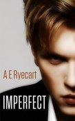 Review: Imperfect by A.E. Ryecart