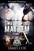 Review: Outlaw MC Series Roundup by James Cox
