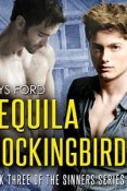 Audiobook Review: Tequila Mockingbird by Rhys Ford