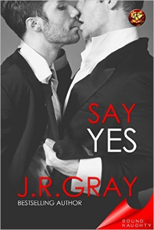 Review: Say Yes by J.R. Gray