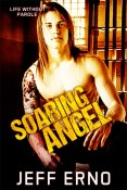 Review: Soaring Angel by Jeff Erno