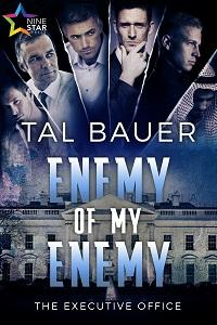 Review: Enemy of My Enemy by Tal Bauer