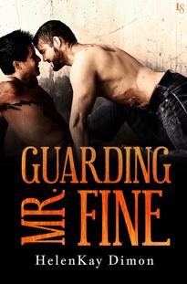 Review: Guarding Mr. Fine by HelenKay Dimon
