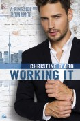 Guest Post and Giveaway: Working It by Christine d'Abo