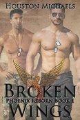 Review: Broken Wings by Houston Michaels