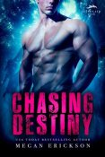 Review: Chasing Destiny by Megan Erickson