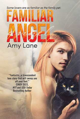 Review: Familiar Angel by Amy Lane