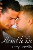 Review: Meant to Be by Terry O'Reilly
