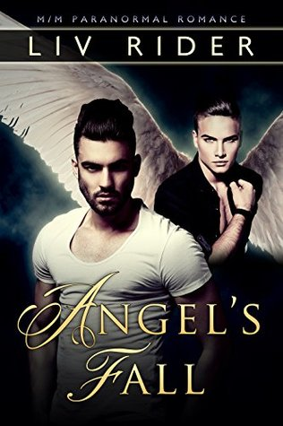 Review: Angel's Fall by Liv Rider
