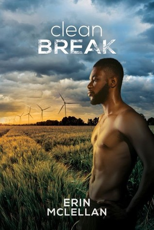 Review: Clean Break by Erin McLellan