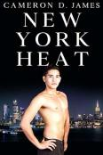 Review: New York Heat by Cameron D. James
