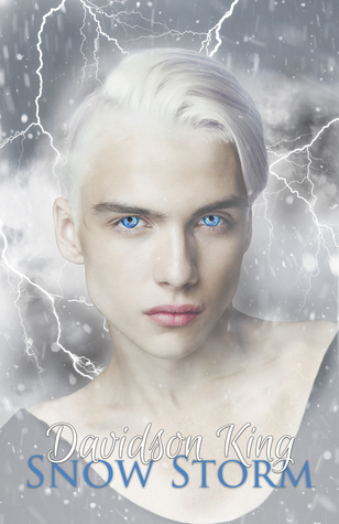 Review: Snow Storm by Davidson King