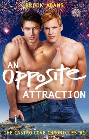 Review: An Opposite Attraction by Brook Adams