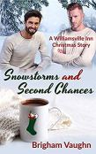 Review: Snowstorms and Second Chances by Brigham Vaughn