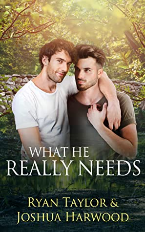Review: What He Really Needs by Joshua Harwood and Ryan Taylor