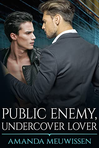 Review: Public Enemy, Undercover Lover by Amanda Meuwissen