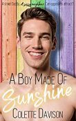 Review: A Boy Made of Sunshine by Colette Davison