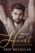 Review: Small City Heart by Erin McLellan