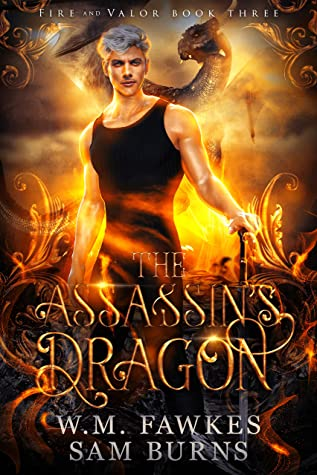 Review: The Assassin's Dragon by W.M. Fawkes and Sam Burns