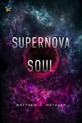 Review: Supernova Soul by Matthew J. Metzger
