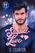 Excerpt and Giveaway: Stupid Love by S.J. Carter