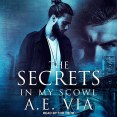 Audiobook Review: The Secrets in My Scowl by A.E. Via
