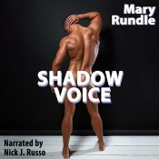 shadow voice audio cover