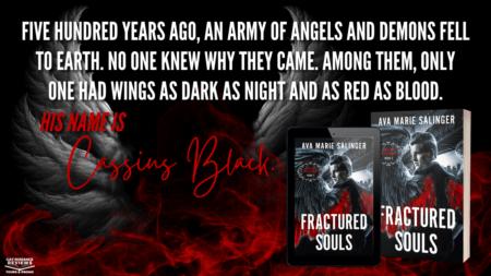 fractured souls banner
