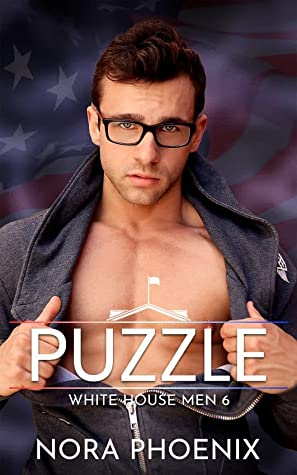 Review: Puzzle by Nora Phoenix
