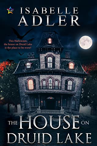 Review: The House on Druid Lake by Isabelle Adler