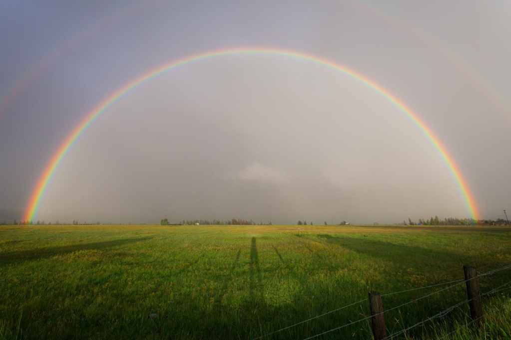 rainbow on grass field