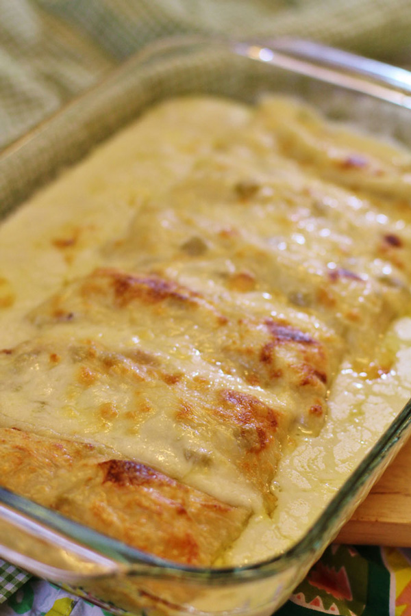White Chicken enchiladas in pan from oven