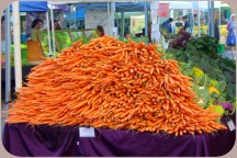 I've never seen a mound of carrots so huge...
