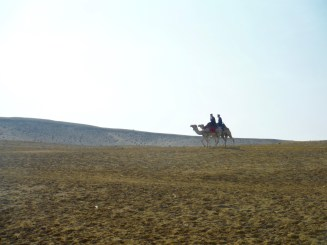 Egyptian Police on Camels!!!