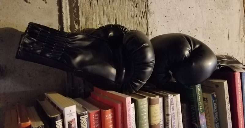 pair of boxing gloves resting on a row of books in an unfinished garage