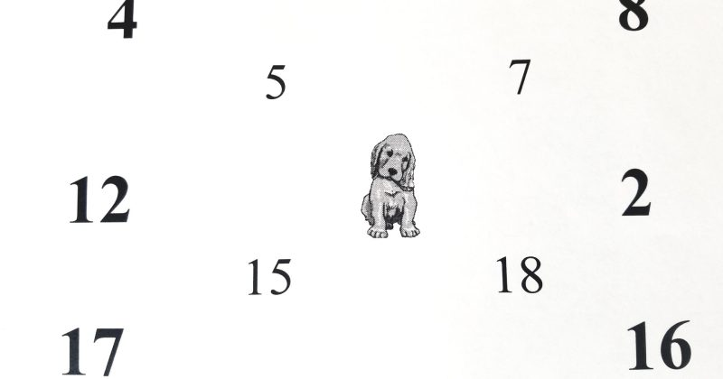 puppy chart used for vision therapy