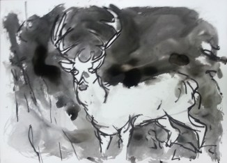 Stag, 2014, India ink on paper 32 x 44 inches