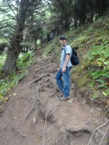 Root filled trail (very steep)