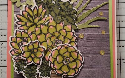 Coloring Technique Simply Succulents Stampin' Up!